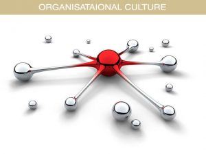 Organisation Culture Services
